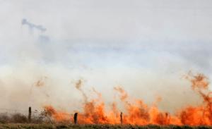 Wildfire Lawyers